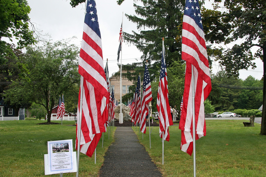 Top_story_0b602d966febdba6feae_1089a4b351902001fbcf_green_village_green__memorial_flags_-_photo_by_tom__salvas