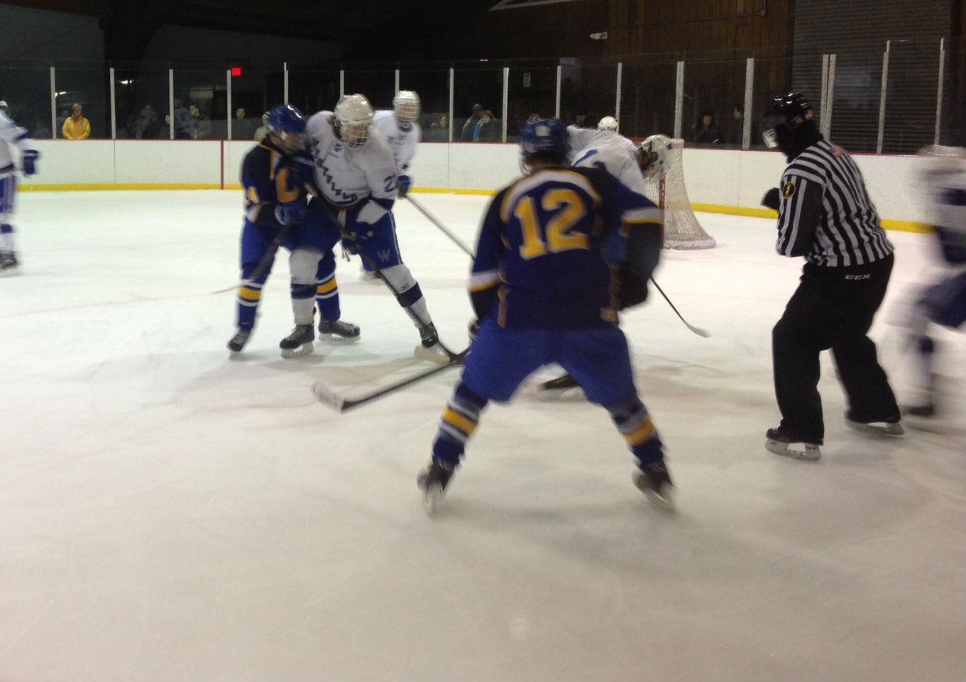 c3afbfaffb8e4efa9bac_hockey_2.jpg