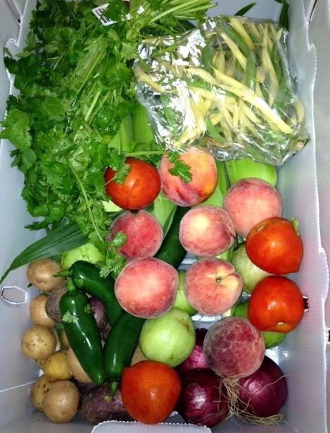 09b055e4698e27f6eb7e_Just_Farmed_Crop_Box.jpg