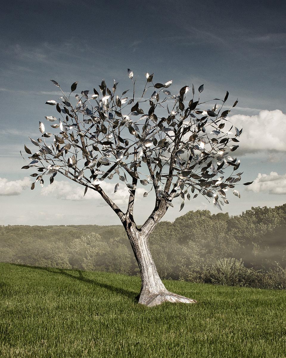 1cdba05ba5f0da1c92b3_Summit_tree_2s.jpg