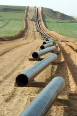 Top_story_03d448119b0c615a61df_pipeline1