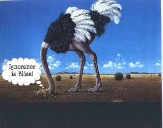6a755ffdbd9d794f18d5_Bliss_-_ostrich_head_in_sand.jpg