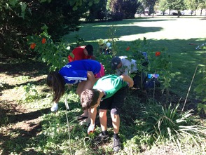 Girl Scout Troop 40674 And Volunteers Help to Beautify Peppertown Park, photo 2