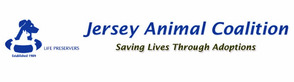Jersey Animal Coalition Pressures South Orange to Allow Shelter to Reopen, photo 1