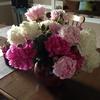 Small_thumb_6d7d725a1cfdbd678ef5_flowers