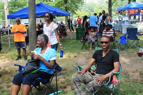 Community Enjoys 2014 Roselle House Music Festival, photo 5