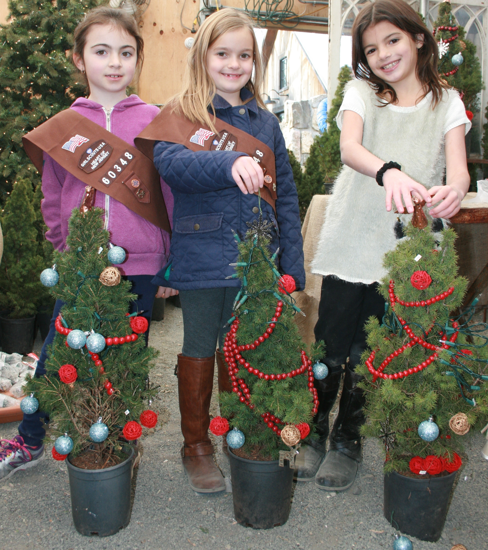 8d736c5e40290fa3747b_Trio_with_Trees.jpg