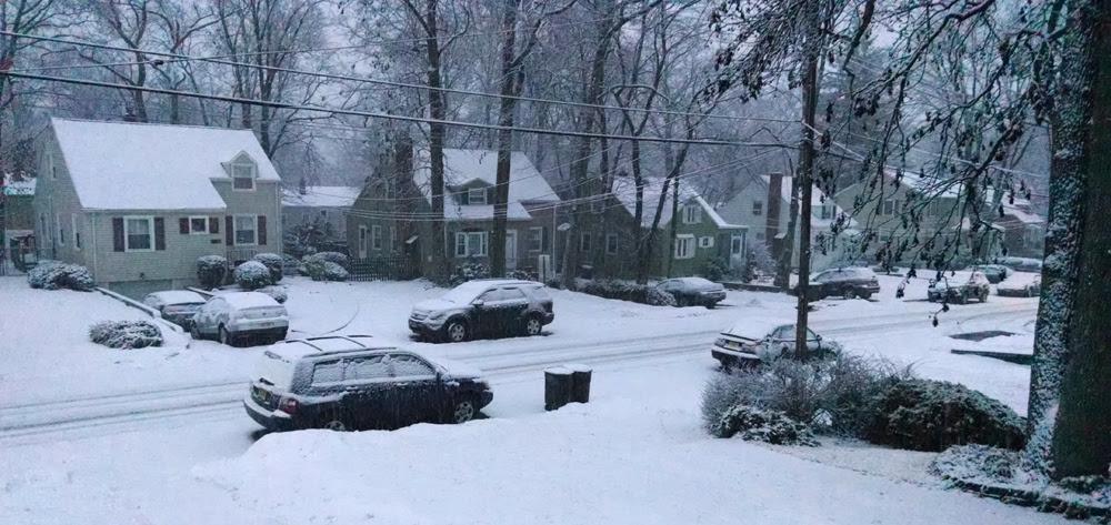 964ed5905fddea3ef182_shady_snow.jpg