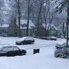 Small_thumb_964ed5905fddea3ef182_shady_snow