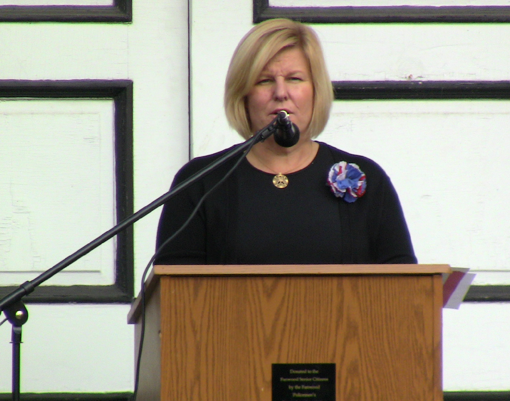 a84ee95de730aef04839_Colleen_Mahr_speaks_at_Veterans_Day_services.JPG