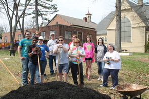 Community Garden Offered At Roselle First Presbyterian Church, photo 6
