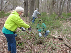 Madison Recreation Complex to Hold National Trails Day Event June 7, photo 1