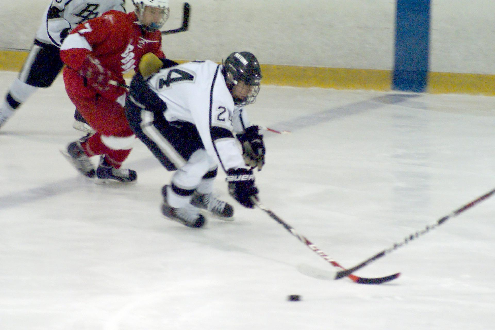 60592ad4218aeaed6cc1_Ice_Hockey_15.JPG