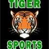 Small_thumb_833a1de8c0c3143bf63f_tiger_sports_logo