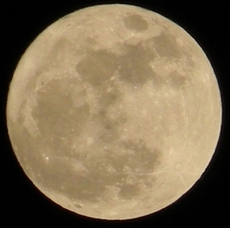 "Don't Miss Out On The ""Extra-Supermoon"" Rising, Aug. 10, photo 1"