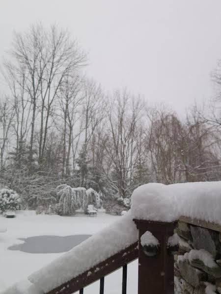 04c6f8f3ff5e626b6748_SNOWday2.17.3.jpg