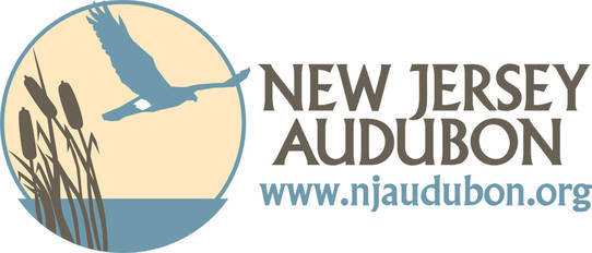 0602e83c06124762ef9f_nj_audubon_logo.jpg