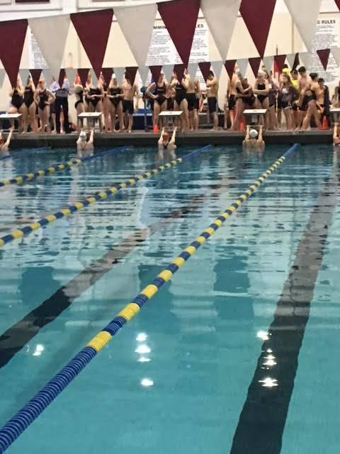 091063e44838b17ee4f3_swim.jpg
