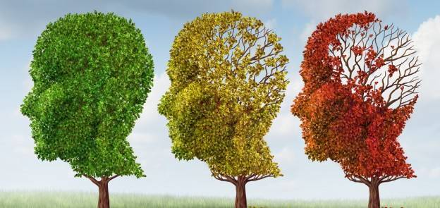 0b29d81aae891ab1791e_Alzheimers.jpg