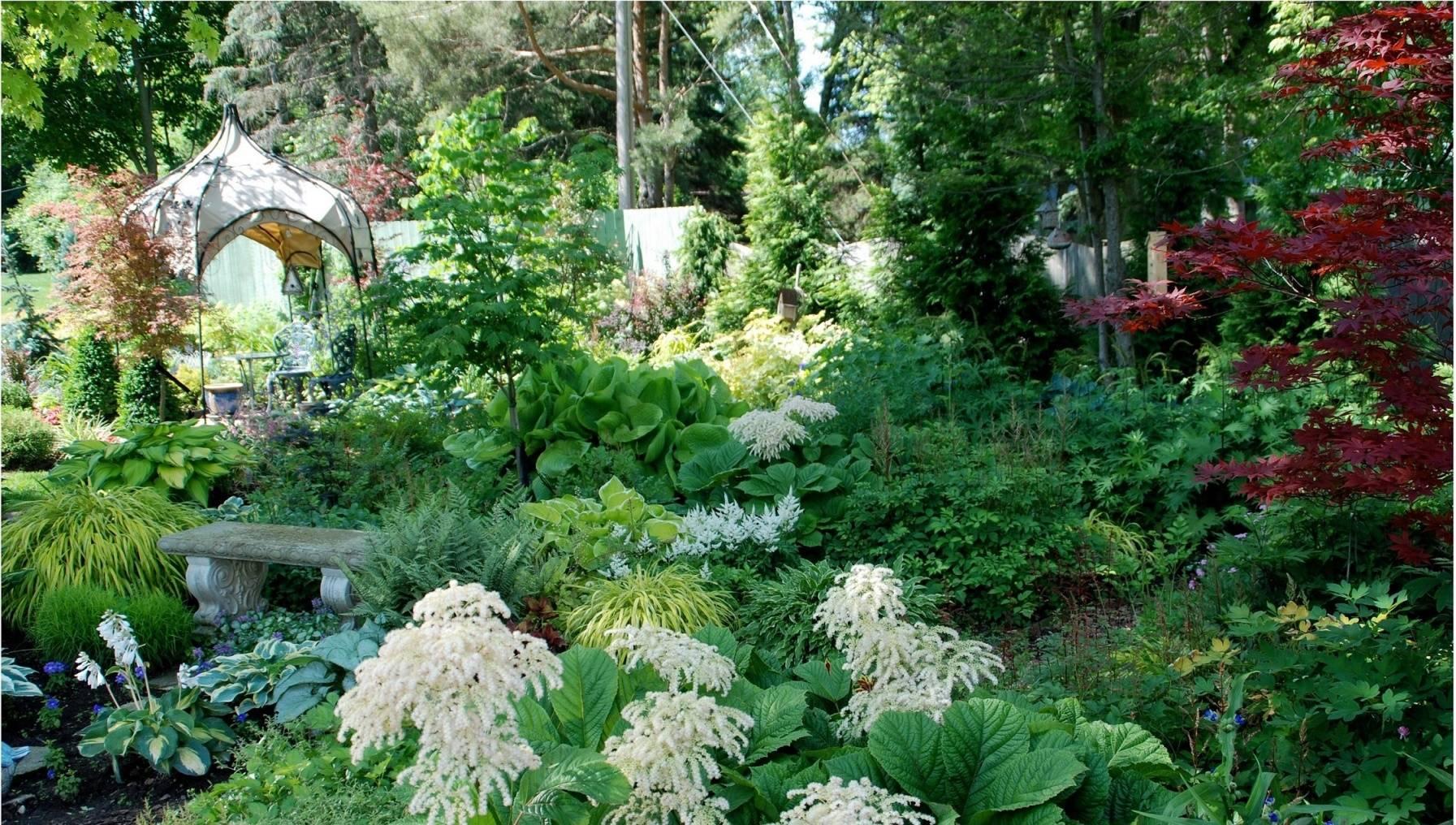 115f045c0f8252693047_Shade_garden_3_photo_credit_Melinda_Myers_LLC.jpg
