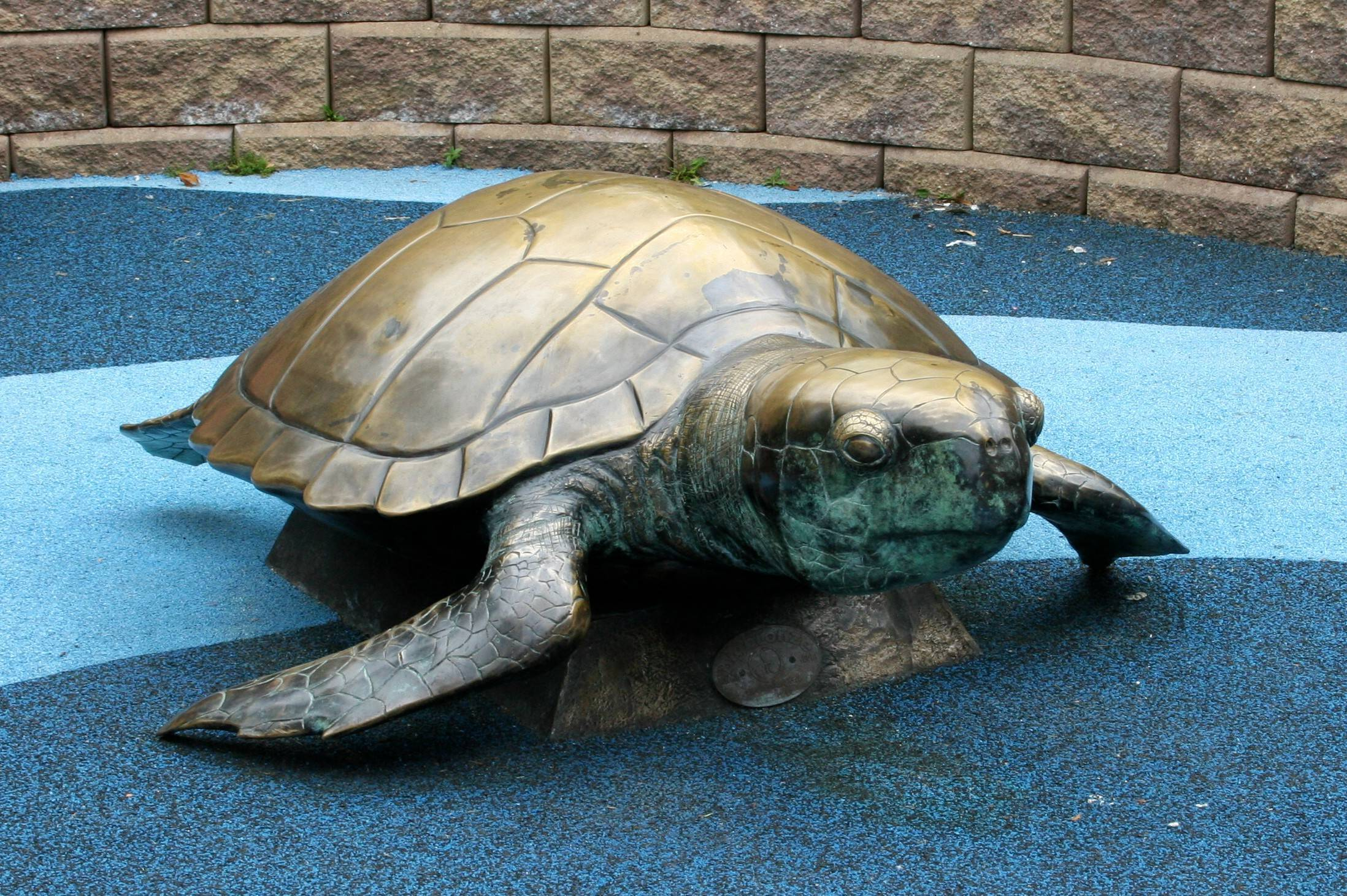 168f45c813918fc466ce_Turtle_Back_Zoo_070.jpg