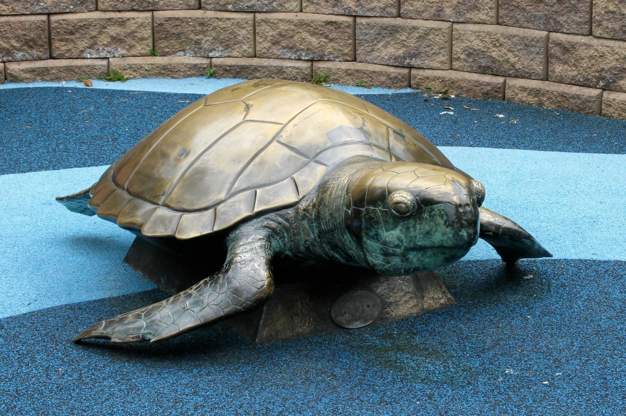 168f45c813918fc466ce_Turtle_Back_Zoo_070.jpg