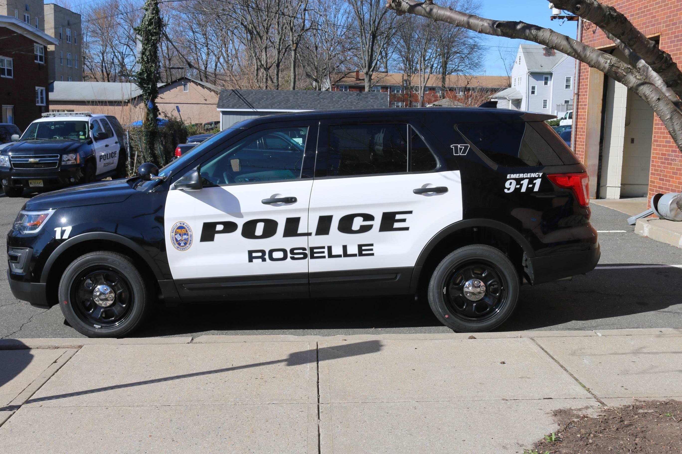 1b12cd427da457d45665_Roselle_Police_Car.jpg