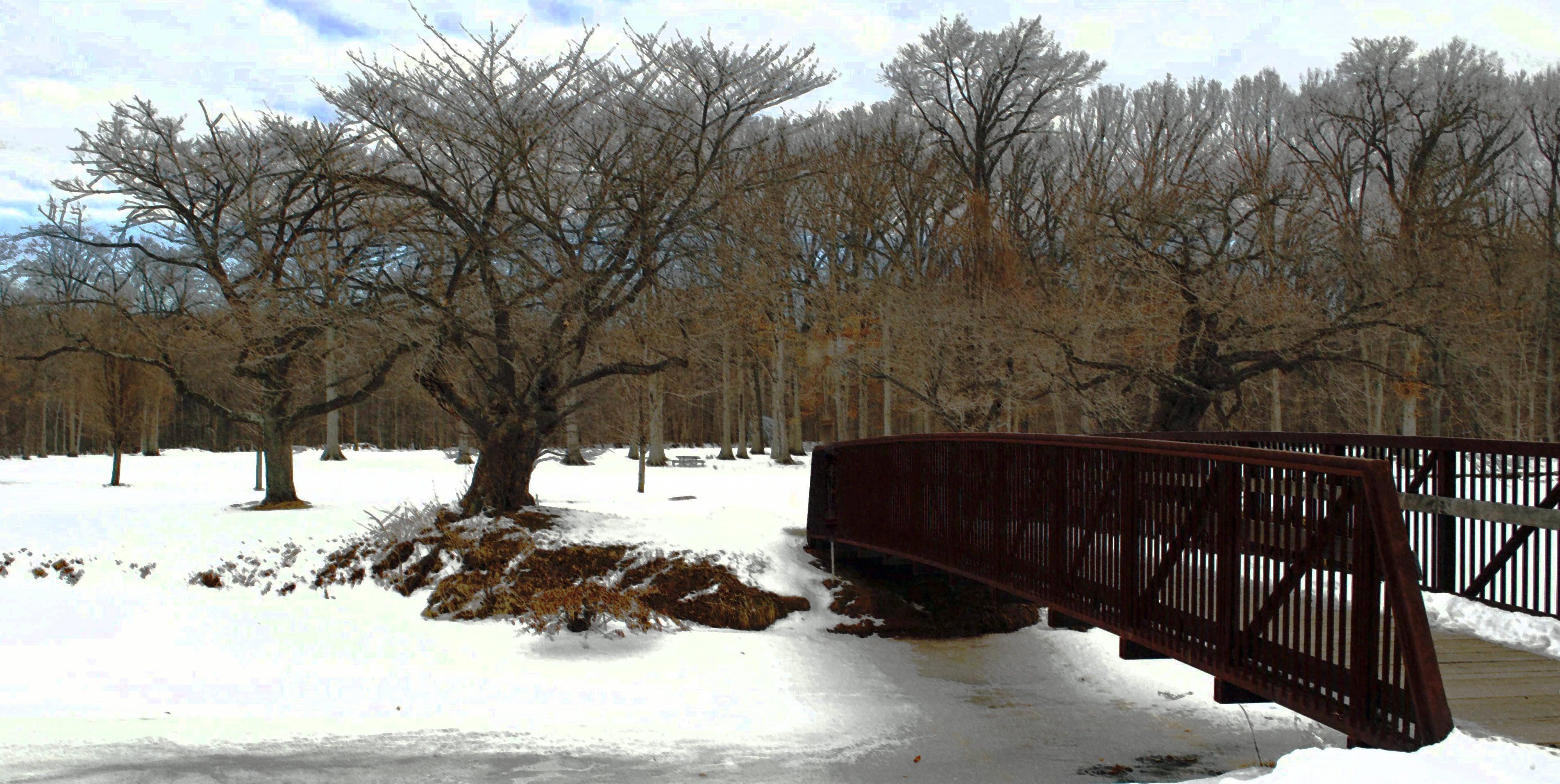 1d1552bb8718274c5f57_Winter_Nomahega_Bridge_2_2.jpg