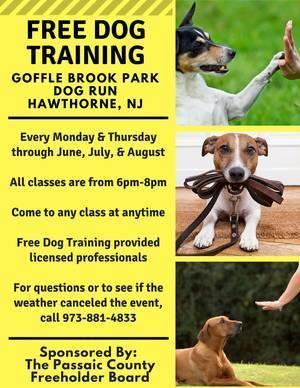 1d990b74434e20d34243_dog_training_2018_.jpg
