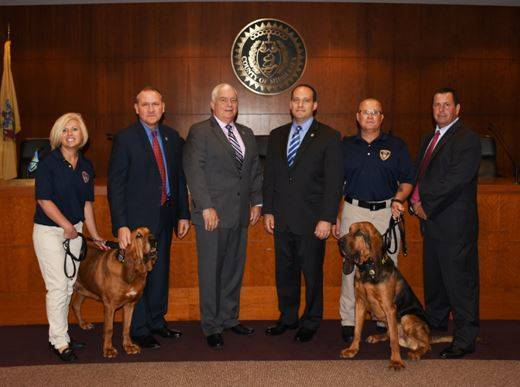 1e2bfe8c5db47bd1b0a5_Crime_Stoppers_Bloodhound_Photo.JPG
