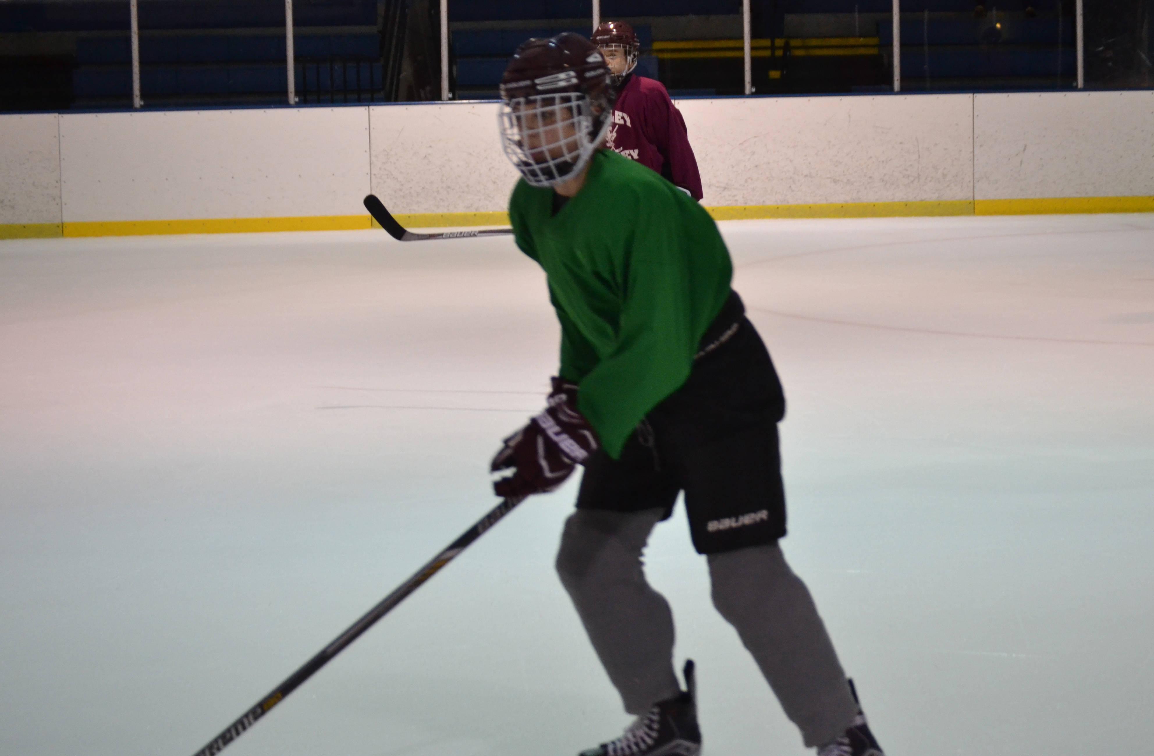 1e2ea22c4bb34d22429f_hockey5.jpg