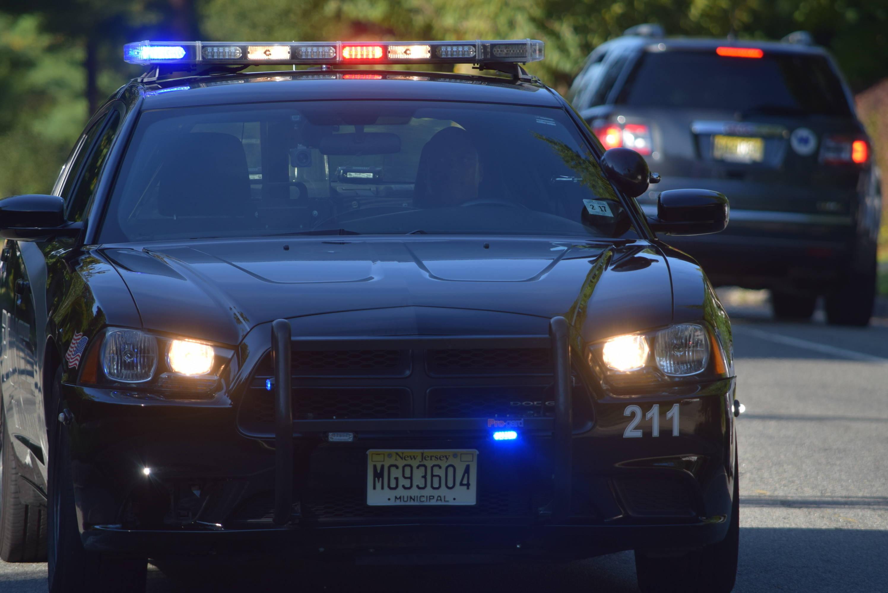 22caba4b12815903f83d_police_car.JPG