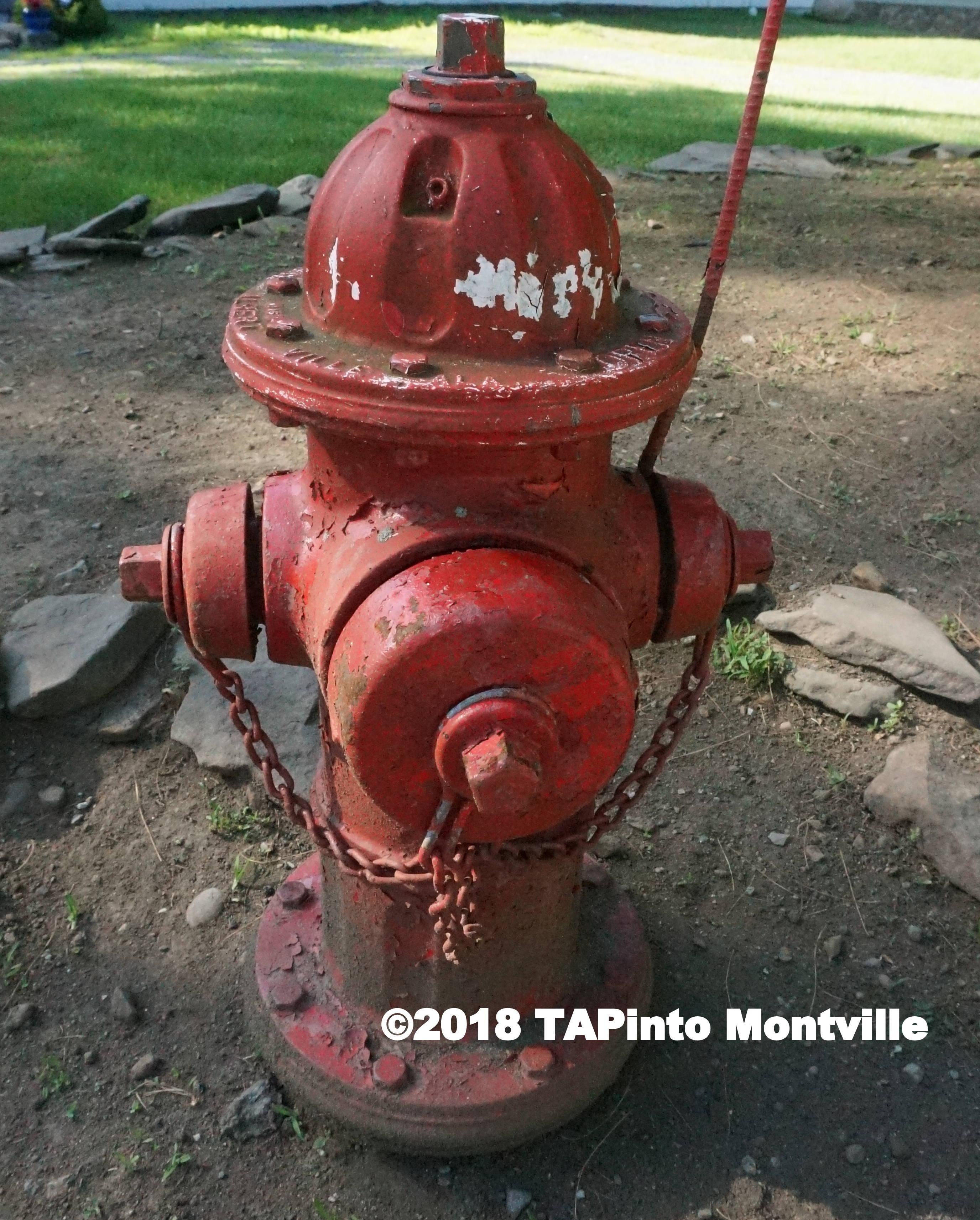 268af03edbd0b8cbd6ec_a_fire_hydrant__4.JPG