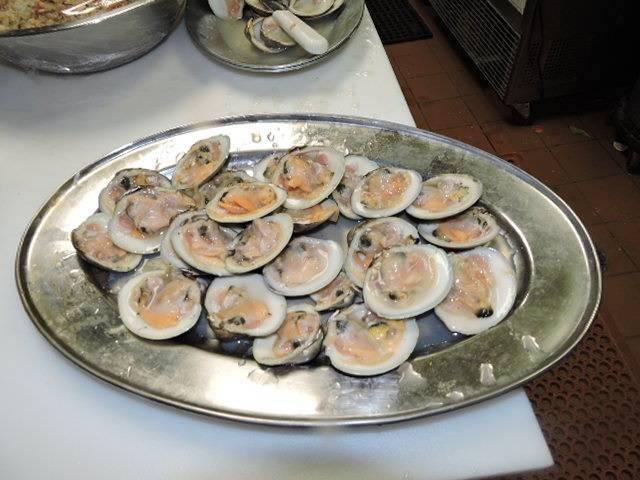 28744efca0c5b292e56b_clams.jpg