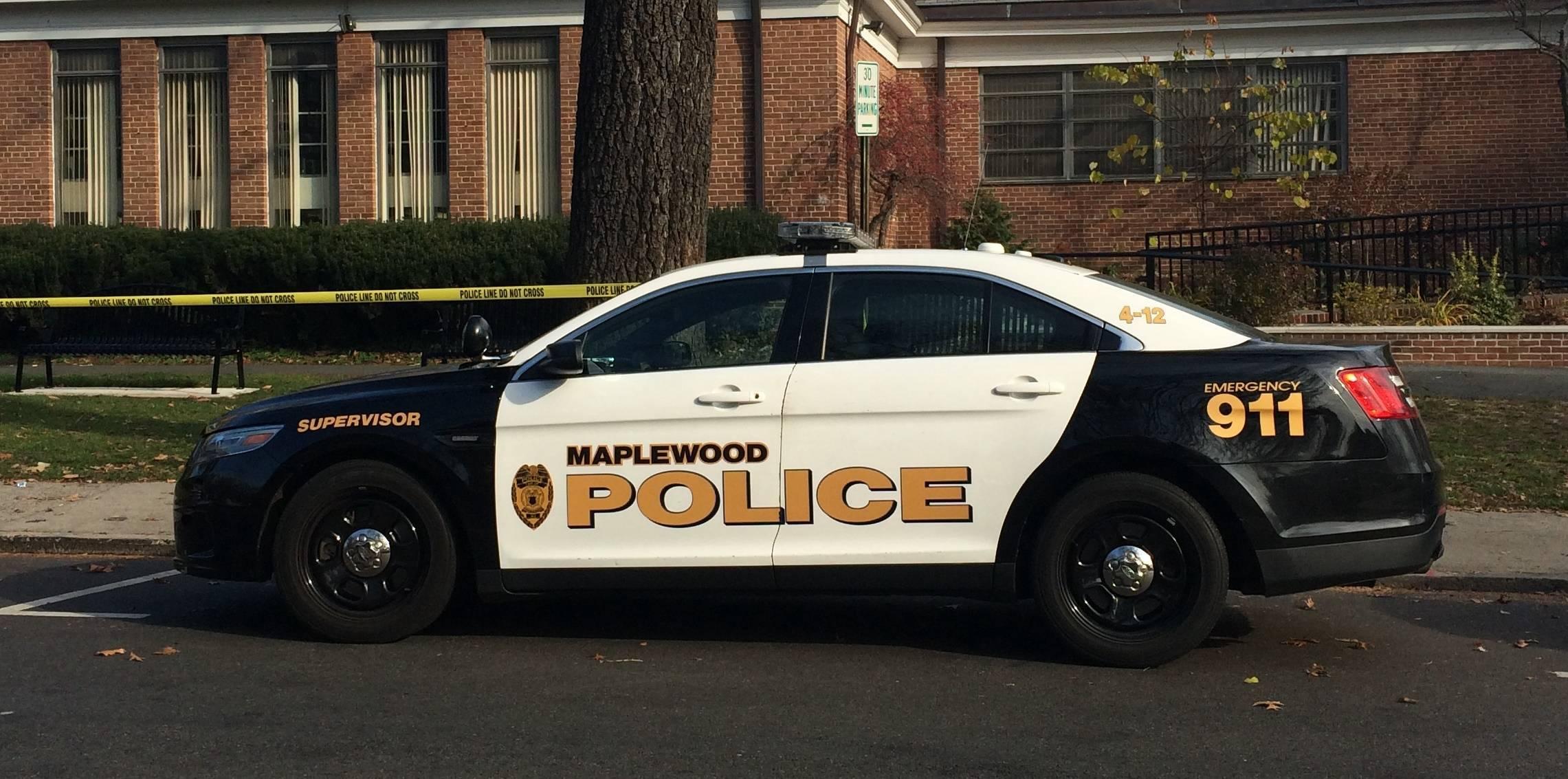 2e1dc93b5af903d463ba_Maplewood_police_car_2.jpg