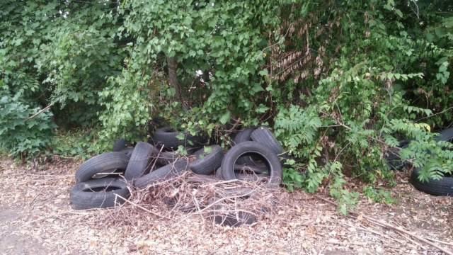 2e9e42a7e2e7b0ac7a3d_tires_dump_behind_North_Avenue.jpg