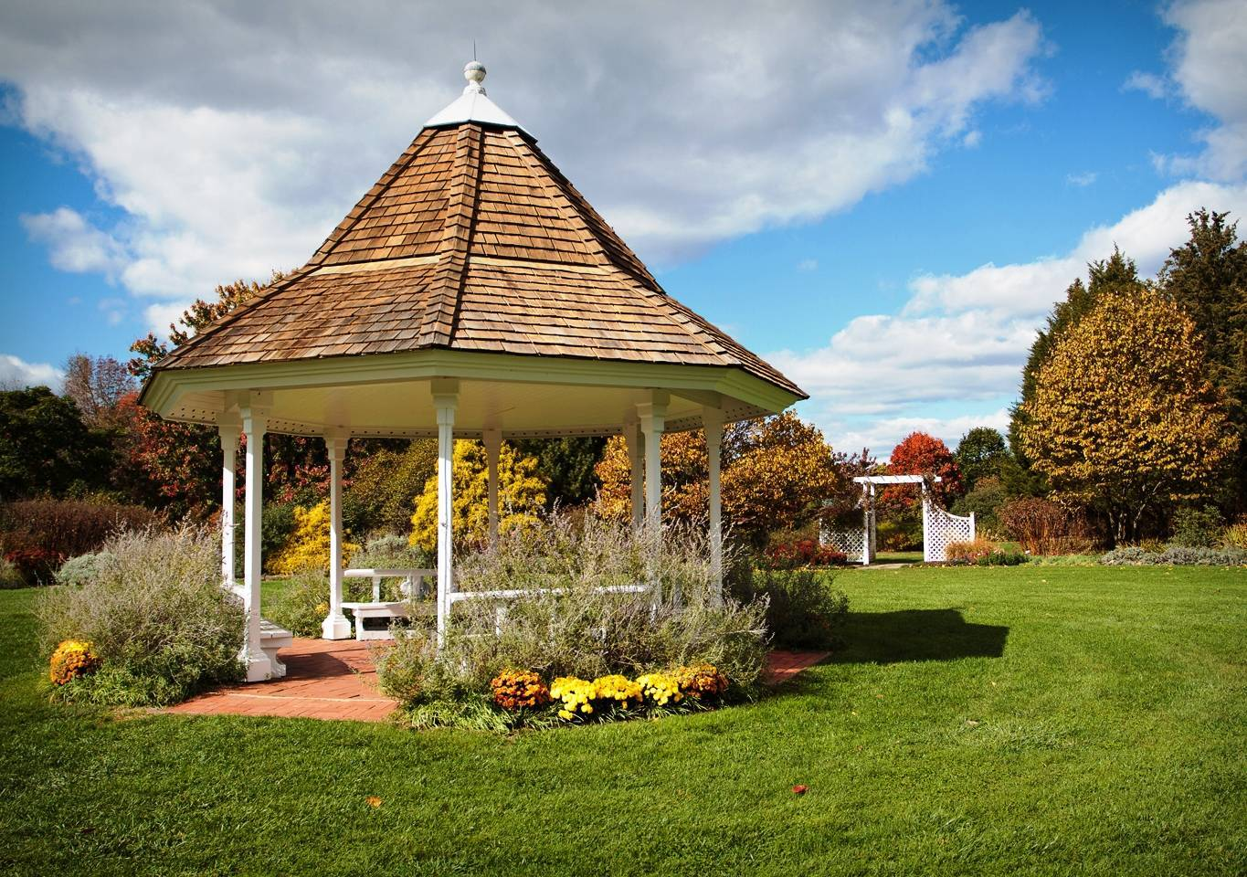 Perennial Garden Turns the Page on Summer as Autumn Flowers Bloom ...
