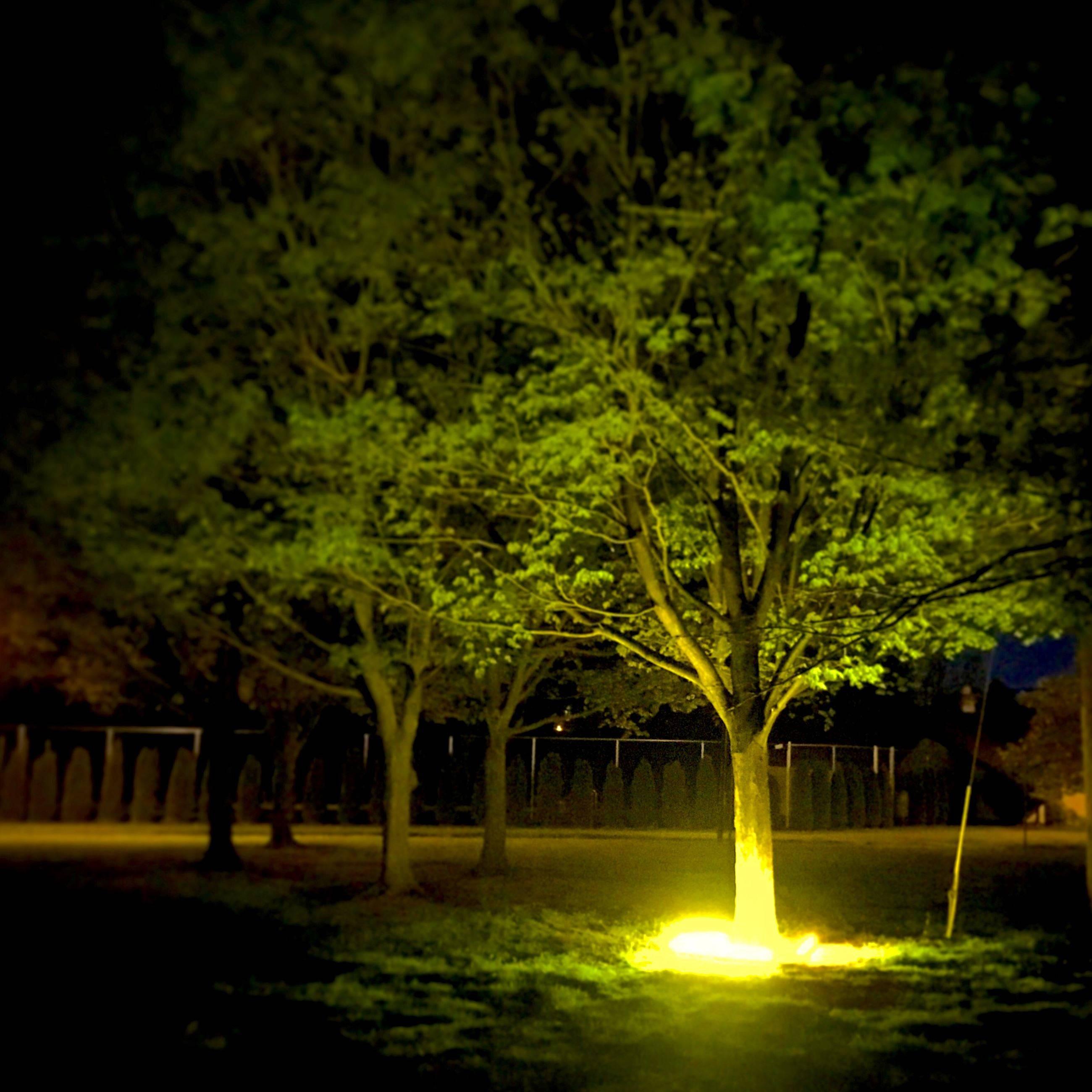 312b119eaa598b675550_lighting_installation.jpeg