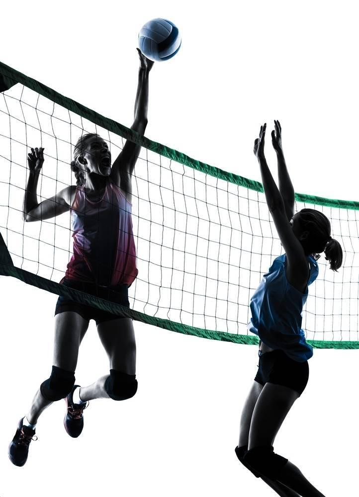 3575ddd7692d935d6fa6_best_708fb8b41ed62bde9161_Volleyball_2.jpg