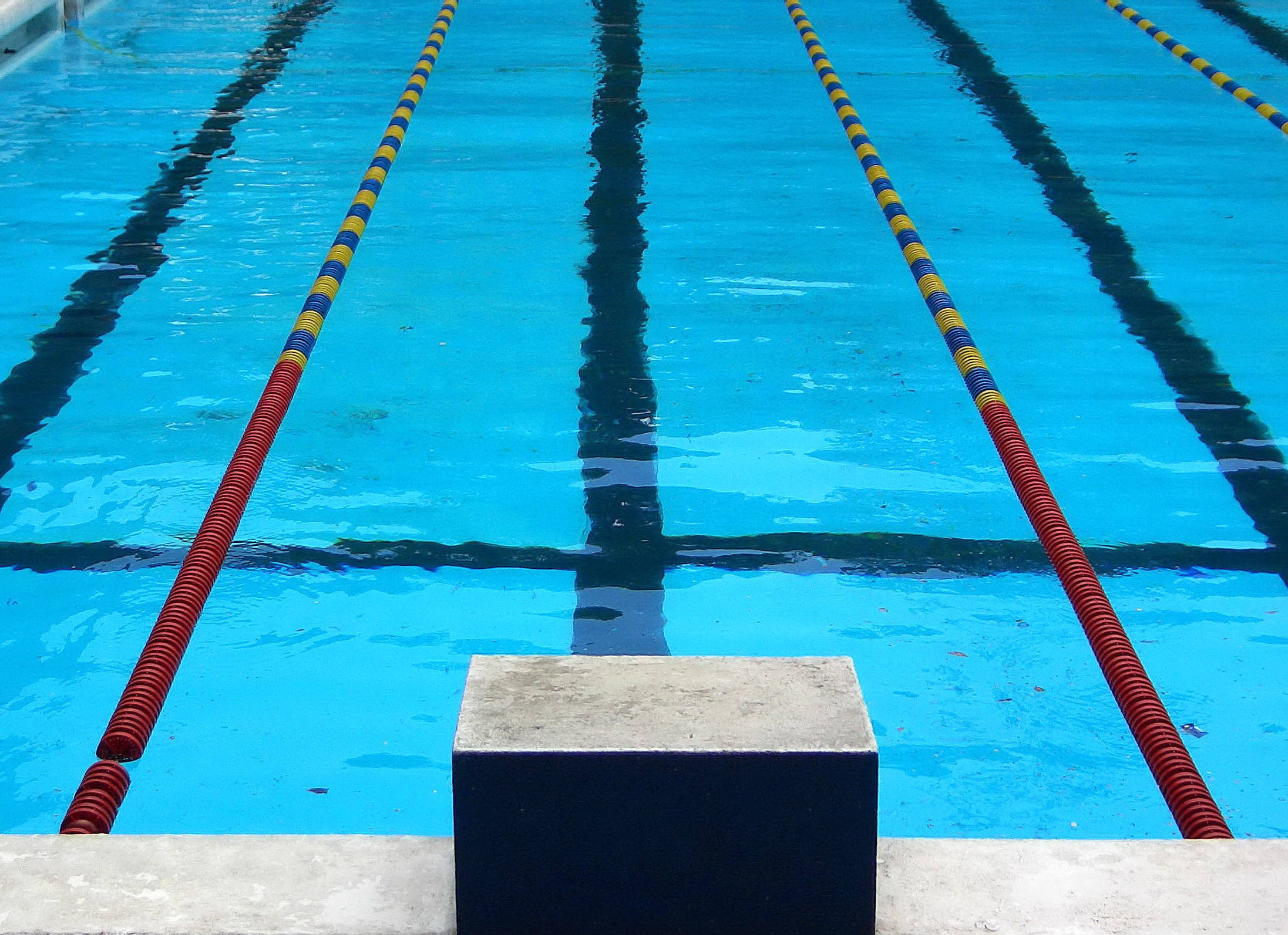 3767f01a361877af7fcd_Competition_swimming_pool_block.jpg