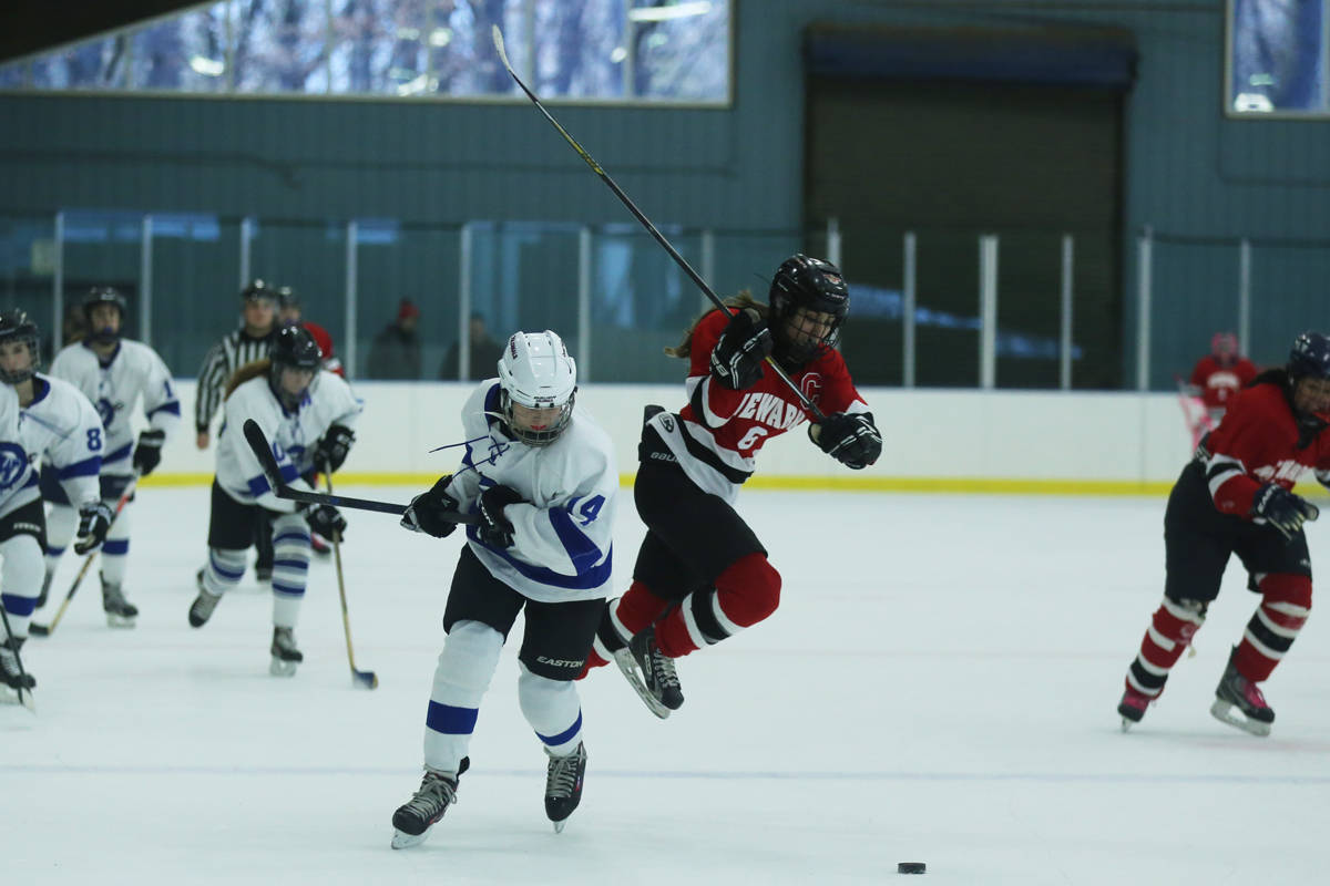 3c875db0543902e5581d_NewarkHockey1200x800-1.jpg