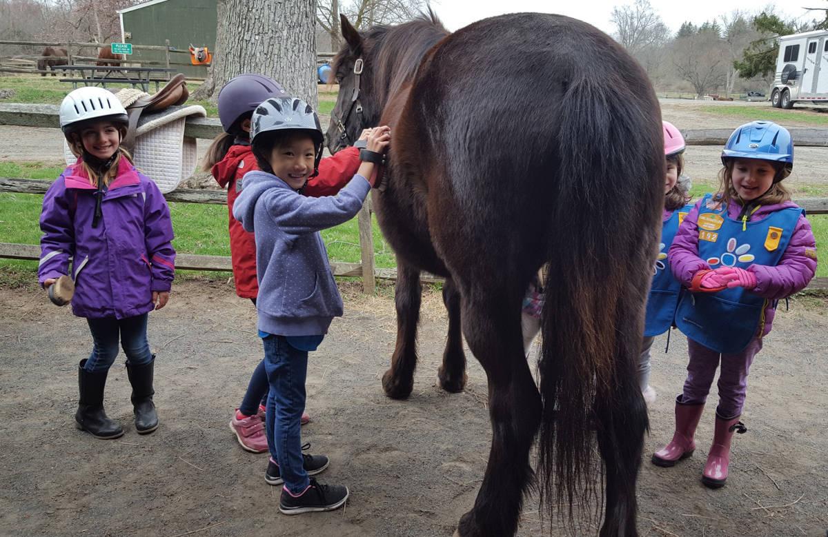 3db65fbb7ffb8a4463c5_Meet_the_Ponies_4.15.18_004B_copy.JPG