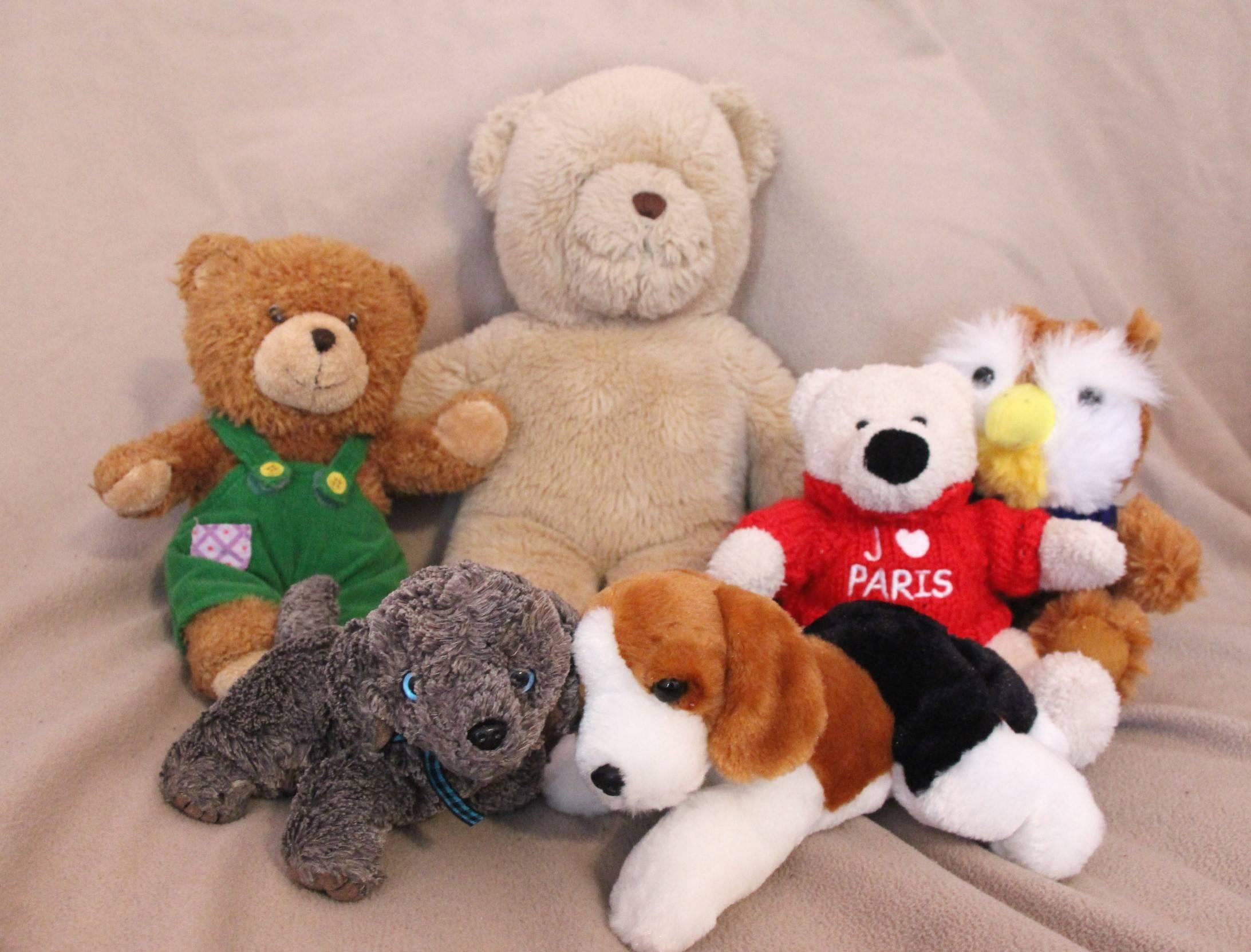 3f06d13f3380ca1f6415_EDIT_teddy_bear_shot.jpg