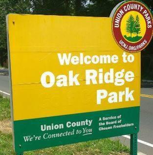 484c5c43d113ad193635_Oakridge_park2.JPG
