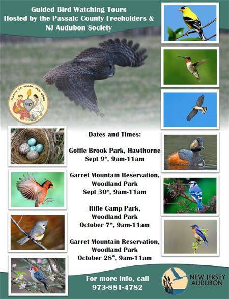 48fbd1fd12b835487e9e_Bird_Watching_Flyer_thumb.jpg