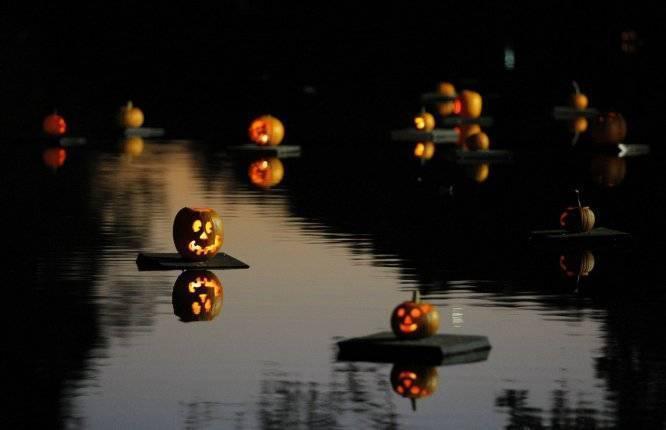 490718e3263f26b498e0_c2b0697bfb4cfc5ecd20_Pumpkin-Sail-1.jpg