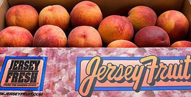 4b9cb703053f92a5e15c_peaches.jpg