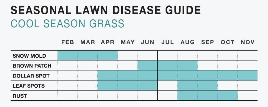 534f1d1b227aa45f1cd5_Lawn_Chart.jpg