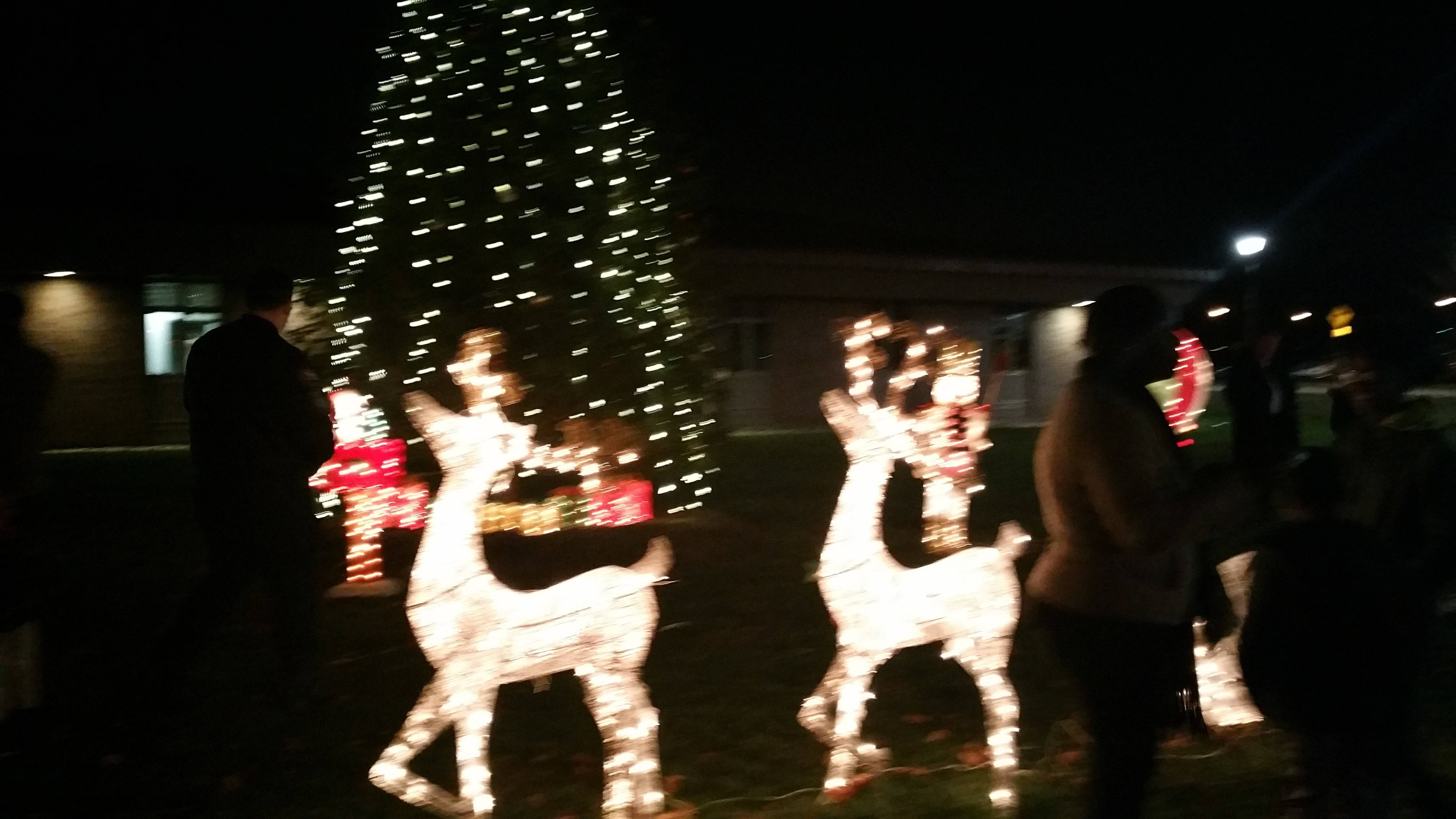 5417c275e63110c98a41_Piscataway_Christmas_Lights.jpg