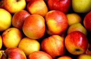 5bfabad613854d7927e5_carousel_image_1b30fe0c26eac3eab632_apple-fruit-fruits-delicious-162806.jpeg